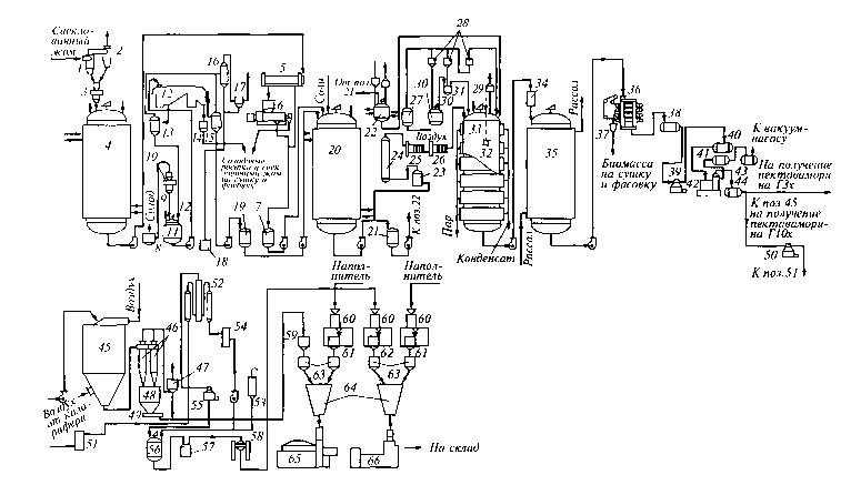 Диплом производство ферментов