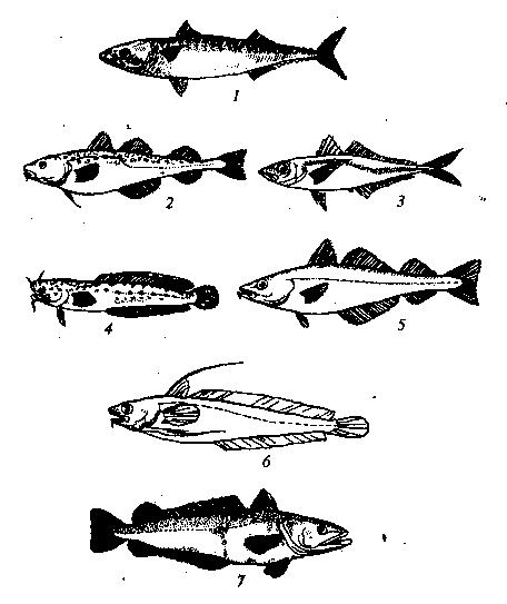 Сложне рецепты в простых картинках